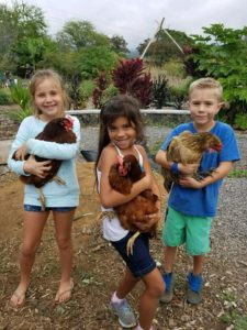 backyard chickens, beer, craft beer, hawaii, kona, ola brew, kona brew fest, brew fest, sustainability, go green, green events, food event